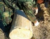 Дерево приобретает эстетичный внешний вид, сохраняя защитные свойства