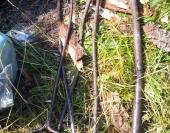 Крючки и ломы - являются рычагами при транспортировке бревен