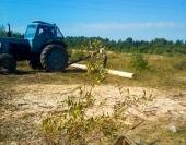 Транспортируем готовые к рубке бревна по площадке с помощью трактора